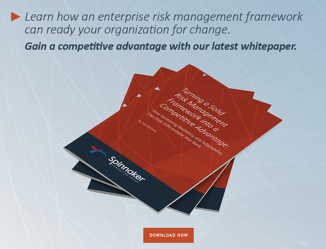 SPIN_Risk_Compliance_Web_Whitepaper_FINAL