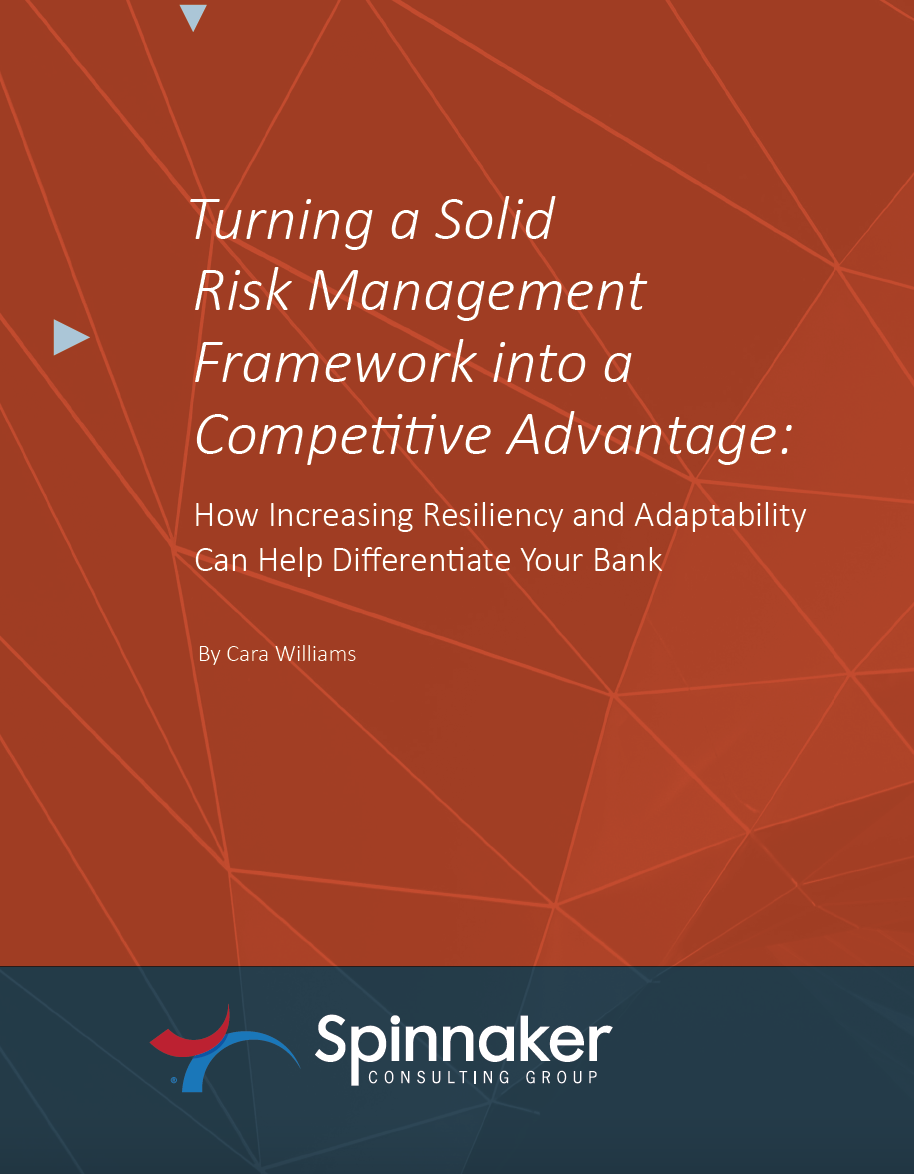 Turning A Solid Risk Management Framework into a Competitive Advantage Whitepaper
